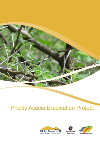 Prickly_Acacia_Eradication_Project_pg1