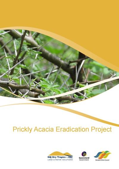 Prickly_Acacia_Eradication_Project_pg1