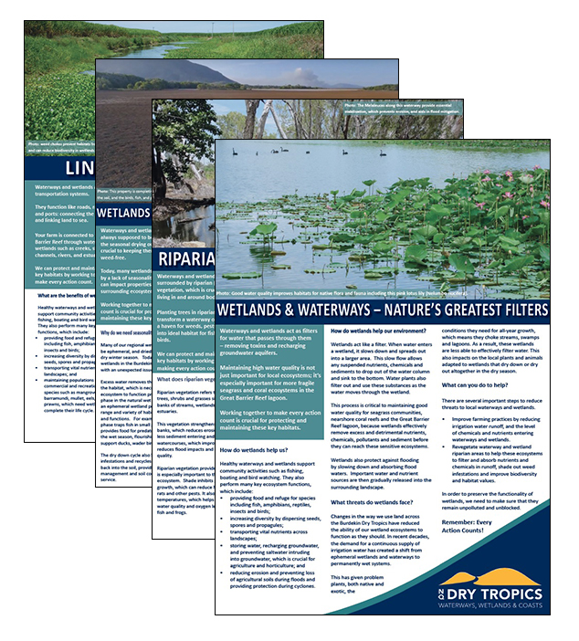 The Wetlands, Waterways & Coasts group has developed a series of factsheets on issues related to the Burdekin wetlands. These are available to download at http://www.nqdrytropics.com.au/factsheets/