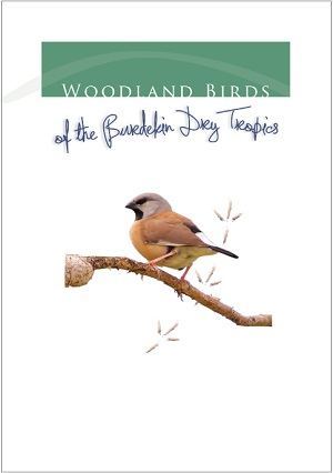 WoodlandBirds_pg1