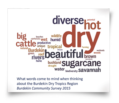 Burdekin Community Survey 2015